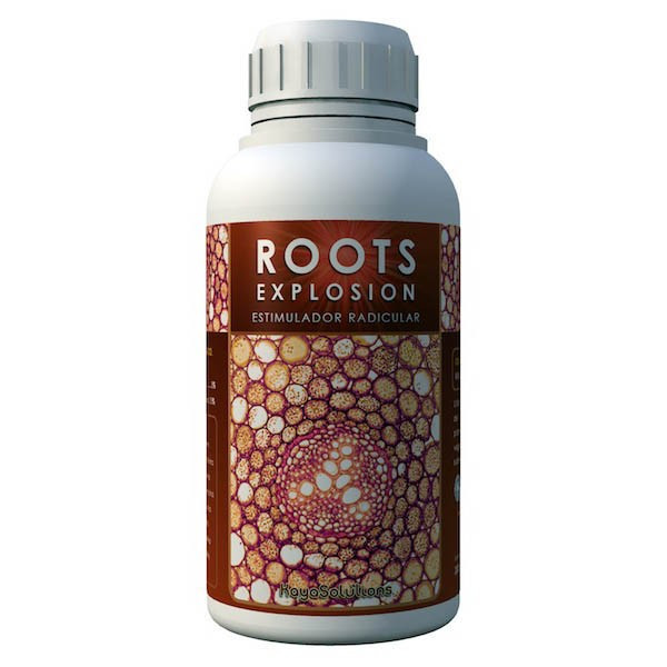 Roots Explosion