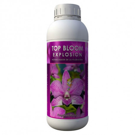 Top Bloom Explosion