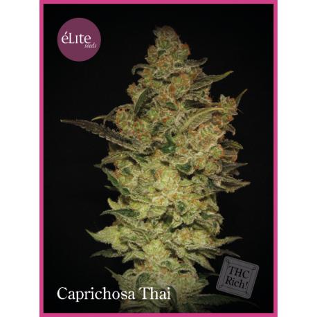 Caprichosa Thai