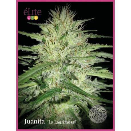 """Juanita """"La Lagrimosa"""""""