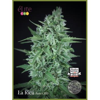 La Rica - Autofloreciente CBD