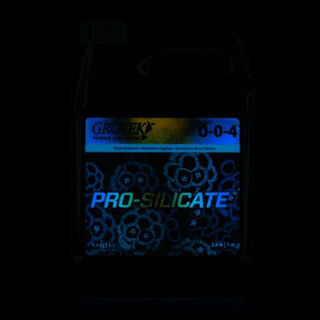 Pro-Silicate