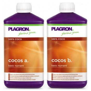 COCO A+B PLAGRON
