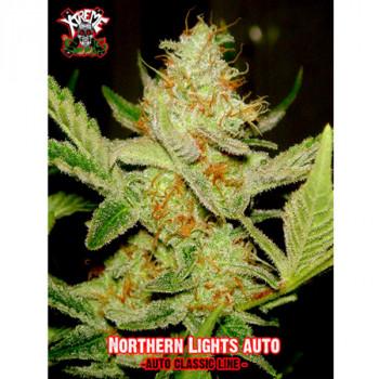 Auto Northern Lights