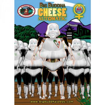 Auto Big Buddha Cheese