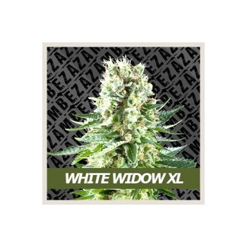 White Widow XL