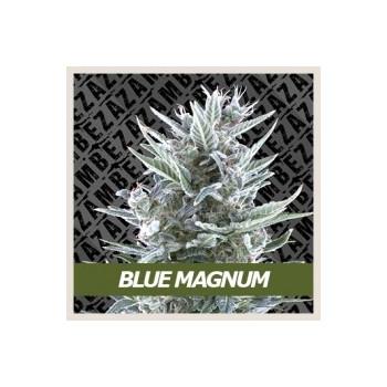 Blue Magnum