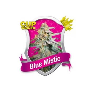 Blue Mistic