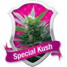 Special Kush 1