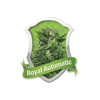Royal Automatic