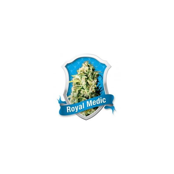 Royal Medic