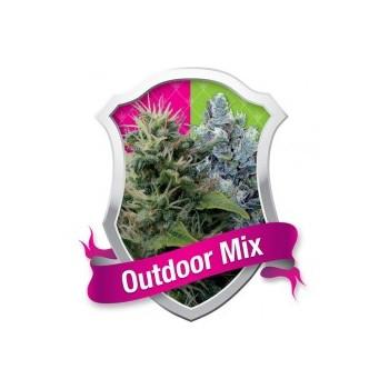 Outdoor Mix