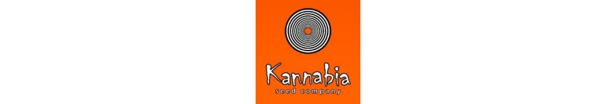 KANNABIA - Planta-T Alicante grow online