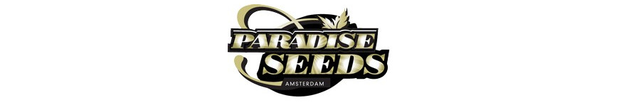 PARADISE Seeds - Planta-T Alicante grow online