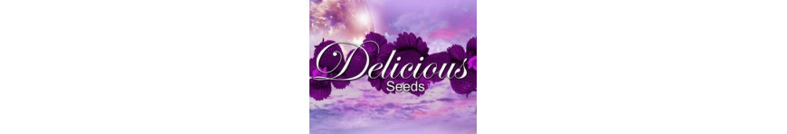 DELICIOUS Seeds - Planta-T Alicante grow online