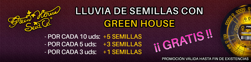 Lluvia de semillas en Green House